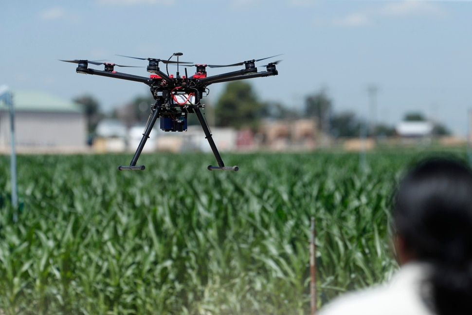 (David Zalubowski   AP Photo) In this Thursday, July 11, 2019, photograph, United States Department of Agriculture engineering technician Kevin Yemoto guides a drone into the air at a research farm northeast of Greeley, Colo. Researchers are using drones carrying imaging cameras over the fields in conjunction with stationary sensors connected to the internet to chart the growth of crops in an effort to integrate new technology into the age-old skill of farming.