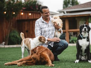 "(Photo courtesy of Tommy Habeeb Enterprises) Tommy Habeeb hosts ""To the Rescue,"" a TV show that profiles rescue dogs and the people who love them."