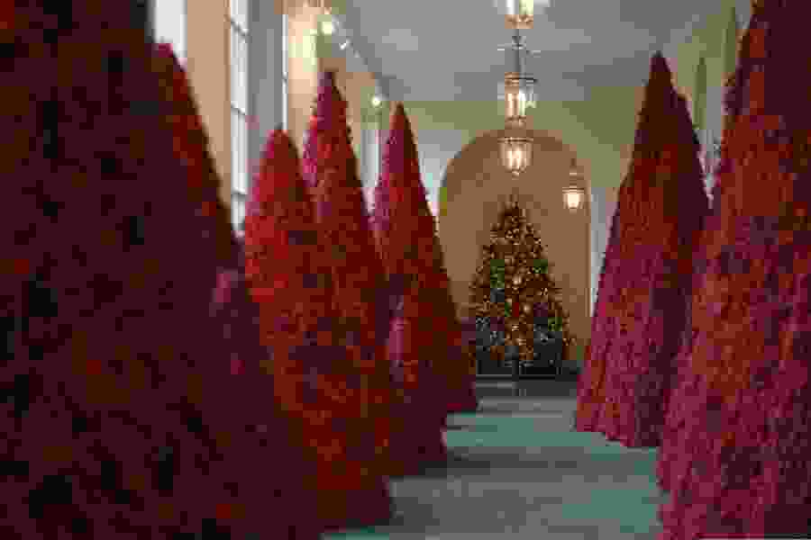 Political Cornflakes: First lady Melania Trump defends those blood-red Christmas trees, which have spawned horror memes on social media