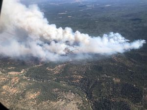 (Image courtesy of the U.S. Forest Service, Dixie National Forest) Photo of the Mammoth Fire.