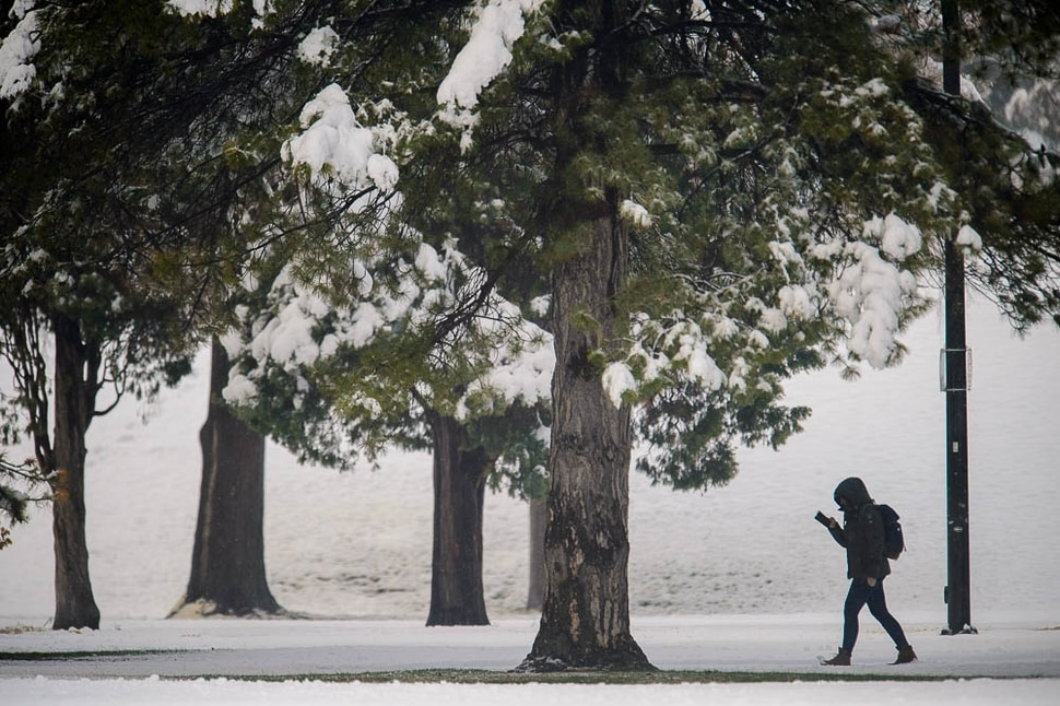 (Trent Nelson | The Salt Lake Tribune) Snow in Salt Lake City's Liberty Park after a storm on Friday March 29, 2019.