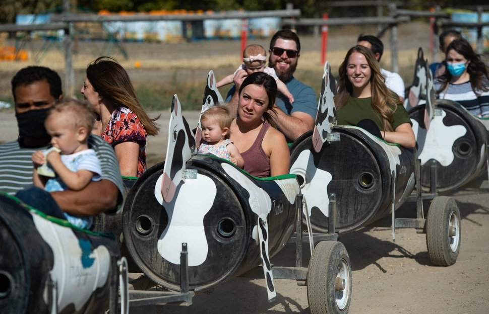 """(Francisco Kjolseth   The Salt Lake Tribune) Wheeler Farm's annual Pumpkin Days celebration is underway, as people enjoy the Family-Friendly Not-so-Scary Halloween,"""" with a hay maze, pumpkin patch, children's train and games on Saturday, Oct. 10, 2020."""